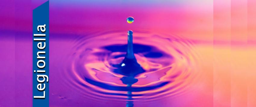 Legionella Water Temperature Testing